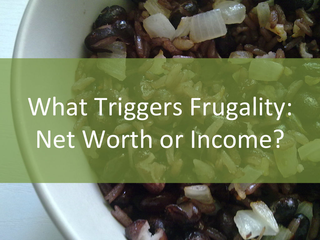 frugalitly net worth or income