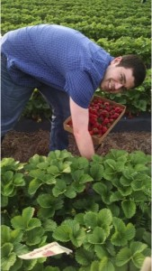 picking strawberries at a nearby farm in May