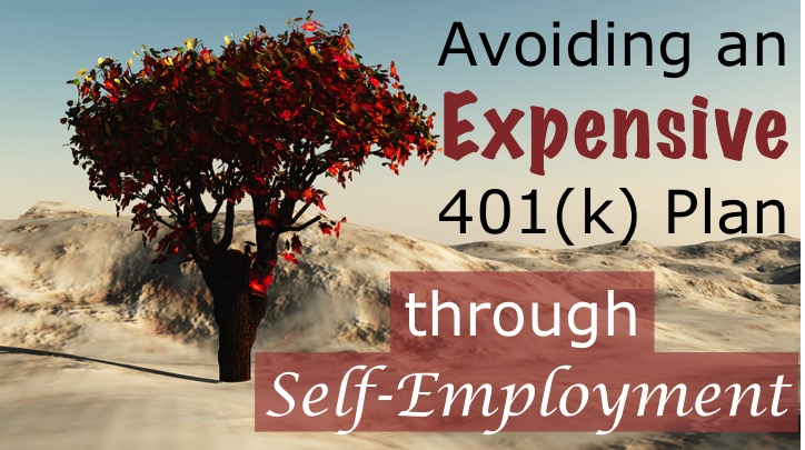 Avoiding an Expensive 401(k) Plan through Self-Employment