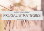 Incorporating New Frugal Strategies